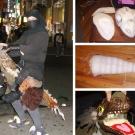Ninja Raptor Rider - Puppetry